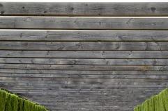 Träfond arkivfoto