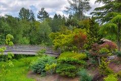 Träfotbro på trädgården för Tsuru öjapan Arkivfoto