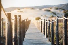 Träfotbro vid stranden Arkivfoto