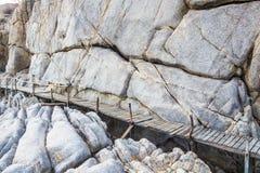 Trägångbana över sanddyerna till stranden Arkivfoton