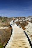 Trägångbana vid stranden på Tauparikaka Marine Reserve, Nya Zeeland Arkivbild
