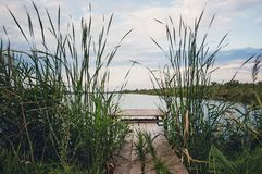Trägångbanor för fiskare på floden royaltyfria foton