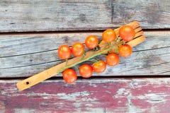 Trägaffel med tomater Fotografering för Bildbyråer