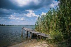 Trägammal pir på flodbanken i sommar Arkivfoton