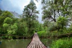 Trägammal svängande bro Arkivfoton