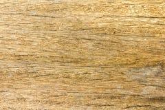 trägammal textur Royaltyfria Foton