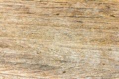 trägammal textur Arkivfoton
