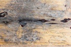 trägammal textur Arkivfoto
