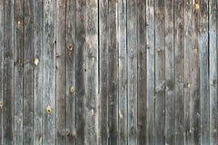 trägammal textur Arkivbilder