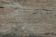 trägammal textur royaltyfri bild