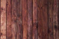 trägammal textur Arkivbild