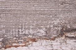 trägammal textur Lantlig träbakgrund för tappning Royaltyfria Bilder