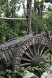 trägammal vagn Arkivfoto