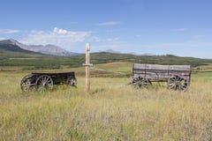 trägammala vagnar Arkivbild