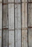 trägammalt skydd Arkivfoton
