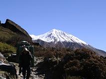 Träger in Langtang-Trekking stockbild