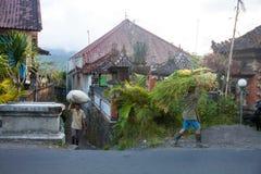 Träger von Waren auf dem Kopf in der Stadt von Bali Lizenzfreies Stockbild