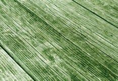 trägrön yttersida med skrapor och suddighetseffekt Royaltyfri Fotografi
