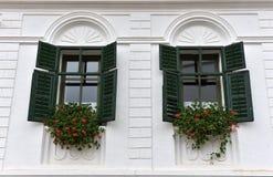 Trägröna fönsterslutare och röda blommor Royaltyfri Fotografi