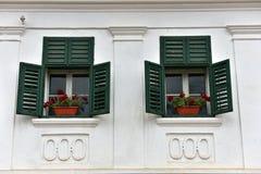 Trägröna fönsterslutare och röda blommor på kalkad ho Royaltyfri Foto
