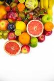 Trägt alles zusammen Früchte Lizenzfreie Stockfotografie