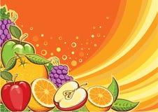 Trägt Hintergrund Früchte. Vektorfarbillustration für De Stockbild