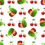 Trägt jam-13 Früchte Lizenzfreie Stockbilder
