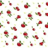 Trägt nahtloses Muster auf Weiß Früchte Lizenzfreie Stockfotografie