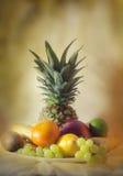 Trägt tropische noch Lebensdauer Früchte Lizenzfreie Stockbilder