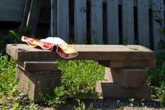 Trähandgjord bänk om den gamla övergav soliga dagen för trädgårds- sommar Royaltyfri Bild