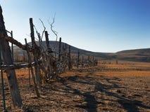 Trähemlagat staket som inneslutar territoriet Gjort ungefärligt från pinnar och filialer Arkivbild