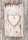 Trähjärta med björkskället på det gamla trät Royaltyfria Bilder