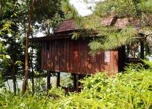 Trähus för thailändsk stil i kullarna Arkivfoto