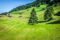 Trähus i Malbun i Lichtenstein, Europa Arkivbild
