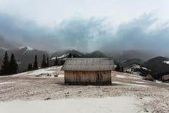Trähus i vinterskog Arkivfoton
