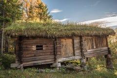 Trähus med gräs på taket Arkivfoton