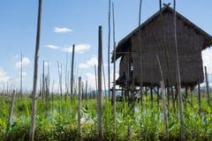 Trähus på den berömda inlesjön i myanmar arkivbilder