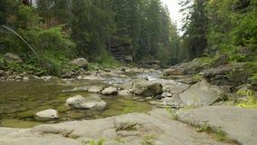 Trähus på en bank av den grunda bergfloden för fors lager videofilmer