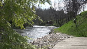 Trähus på flodkust enträdet fattar flyttning i vind 4K stock video