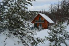 Trähus, snö, träd, natur, mountines Royaltyfri Fotografi