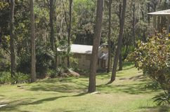 Träkabin i bergen som omges av pinjeskogar arkivbilder