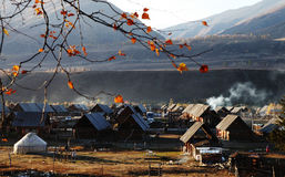 Träkojor med yurt Royaltyfri Bild