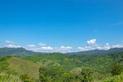 Träkojorna i landsbygden på berget arkivbild