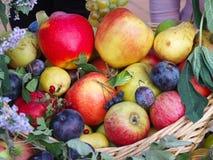 Träkorg full av frukter Arkivbilder