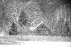 Träliten stuga i skogen som snöar royaltyfria foton