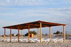Trämarkis med soldagdrivare på stranden på gryning fotografering för bildbyråer