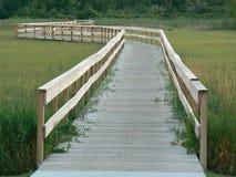 trämichigan walkway Arkivfoton