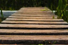 Trämycket liten bro över träsk Royaltyfri Foto