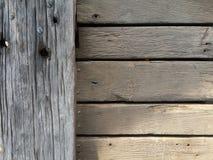 trän Arkivfoto