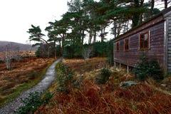 Trän av den Glenveagh nationalparken i Donegal Irland royaltyfri foto